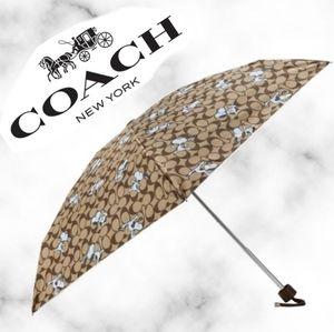 Coach X Peanuts Umbrella With Snoopy Print